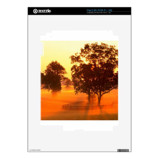Tree Horse Farm Decal For The iPad 2