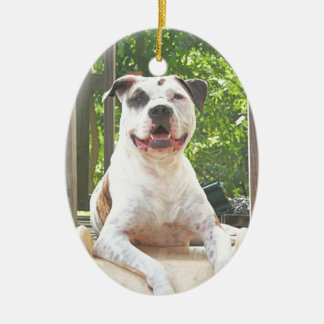 Tree House Pit Bull Christmas Ornaments