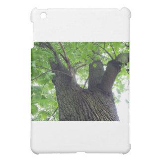 Tree Hugger iPad Mini Cover