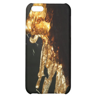 Tree Hugger iPhone 5C Case