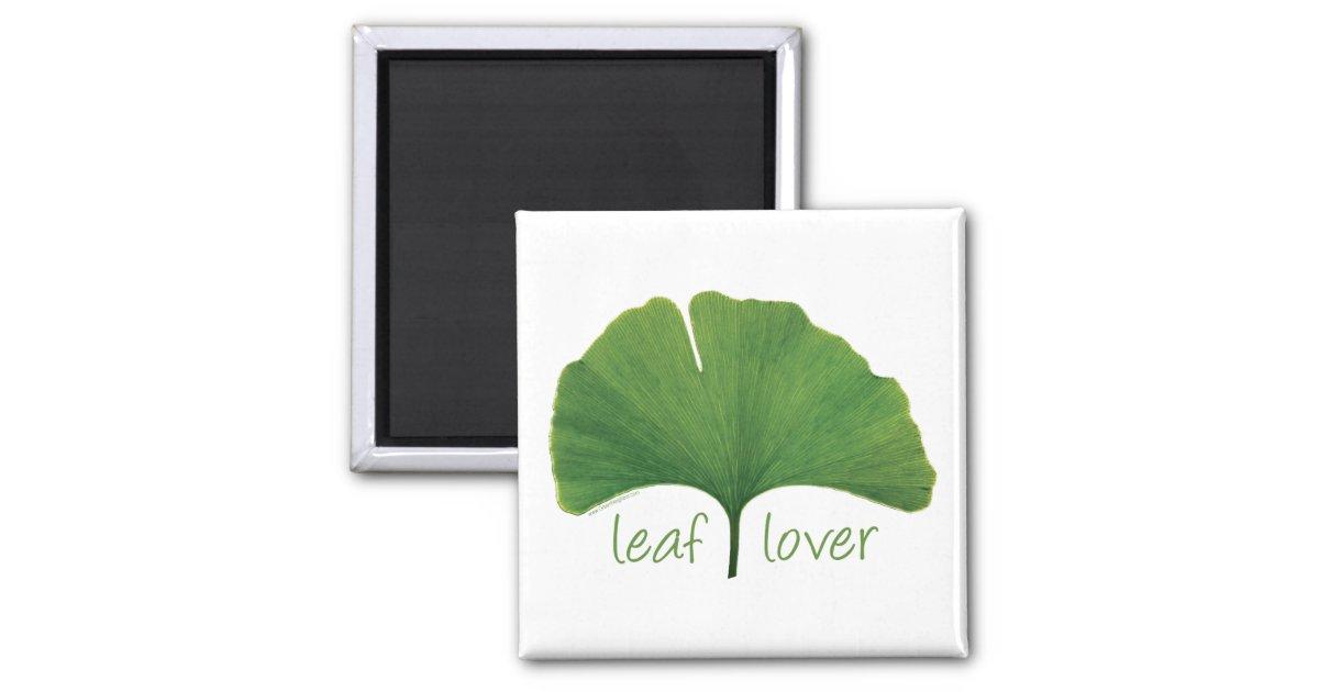 Ginkgo leaf magnet