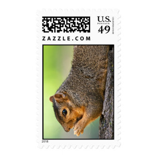 Tree Hugger Stamp