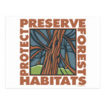 Tree Hugger, Protect Forests Post Card