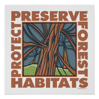 Tree Hugger, Protect Forests Poster