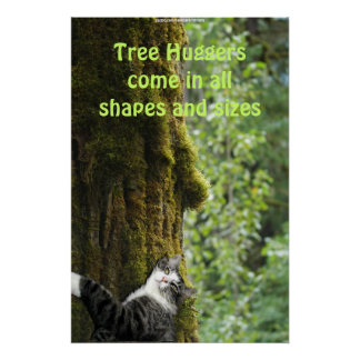 Tree Hugging Tabby Cat in Forest Earth Day Poster