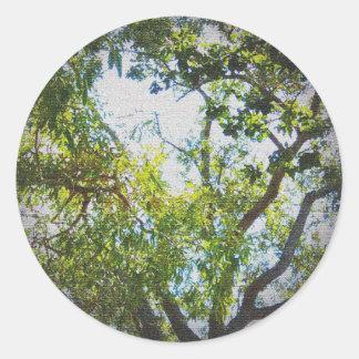 Tree Image Vignette Canvas texture Classic Round Sticker
