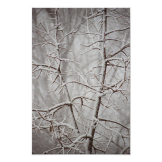 Tree in  a Snowstorm Poster