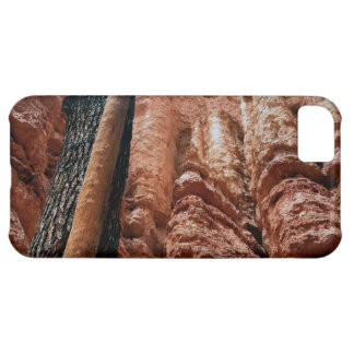 Tree-in-a -tree Navajo Loop at Bryce Canyon iPhone 5C Case