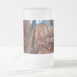 Tree-in-a -tree Navajo Loop at Bryce Canyon Nation Frosted Glass Beer Mug