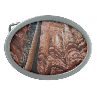 Tree-in-a -tree Navajo Loop at Bryce Canyon Nation Oval Belt Buckle
