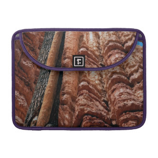 Tree-in-a -tree Navajo Loop at Bryce Canyon Sleeve For MacBook Pro