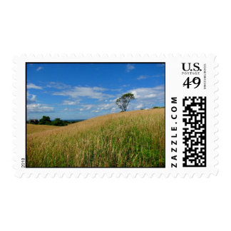 Tree in a Wheat Field Postage Stamp