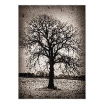 Tree in a winter field invitation