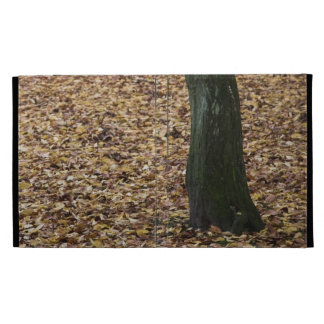 Tree in autumn leaves folio iPad case