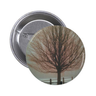 Tree In Fall Products Pinback Button