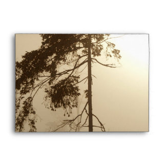 TREE in FOG Greeting Card Envelope