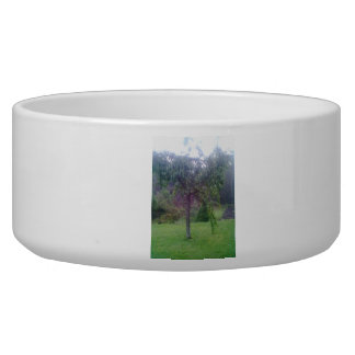 Tree in Garden Bowl