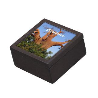 Tree in Madagascar Premium Gift Boxes