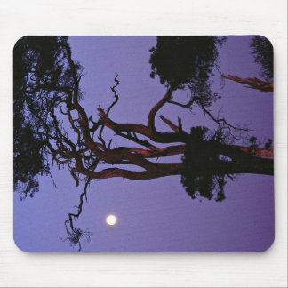 Tree in moonlight, Salisbury Plain, Wiltshire, Eng Mousepad