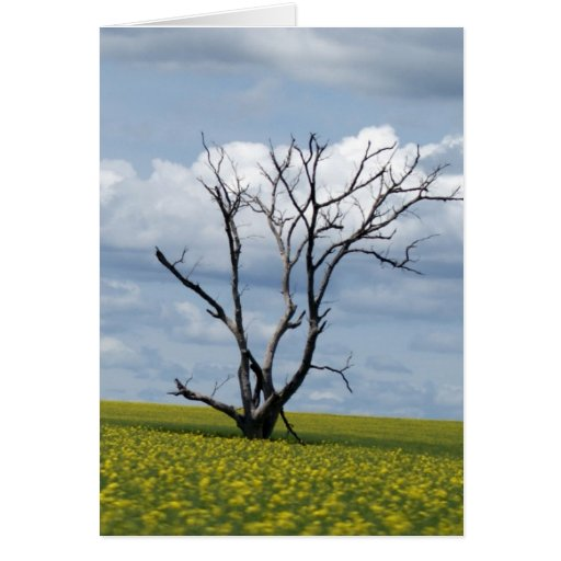 Tree in motion greeting card
