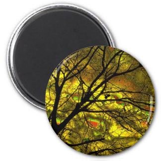 tree in the dark-27a 2 inch round magnet