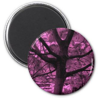 tree in the dark-62a 2 inch round magnet