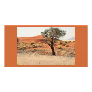 Tree in the desert photo card