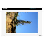 Tree In The Distance Laptop Decal