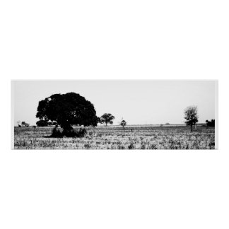 Tree in the field poster