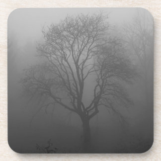 Tree in the fog beverage coaster