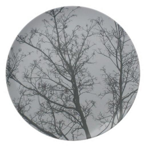 Tree in the fog dinner plate