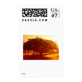 Tree In The Park Postage