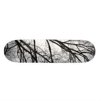 Tree in the Winter Skateboard