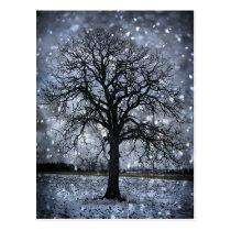 Tree in winter field postcard