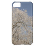 TREE IN WINTER ICE BLUE SKY iPhone 5C Case