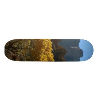 Tree In Zion National Park Custom Skate Board