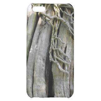 tree iPhone 5C covers