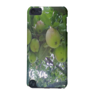 tree iPod touch 5G cases