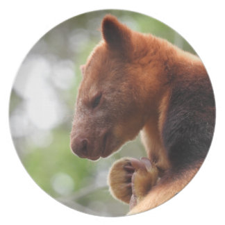 Tree Kangaroo Melamine Plate