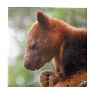 Tree Kangaroo Tile