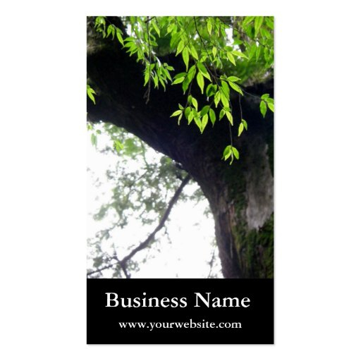 Tree l Still Nature l Photography Business Card Template