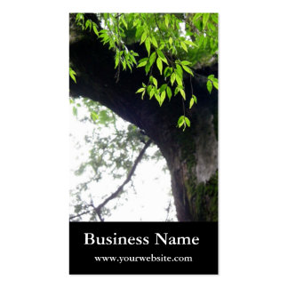 Tree l Still Nature l Photography Double-Sided Standard Business Cards (Pack Of 100)