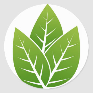 tree  leaf sign classic round sticker