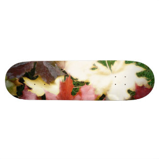 TREE LEAF SKATE BOARDS