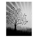 Tree Leaves Grass Silhouette & Sunburst - B&W Postcards