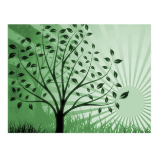 Tree Leaves Grass Silhouette & Sunburst - Green Postcard