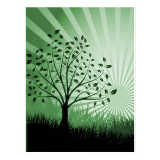 Tree Leaves Grass Silhouette & Sunburst - Green Postcard