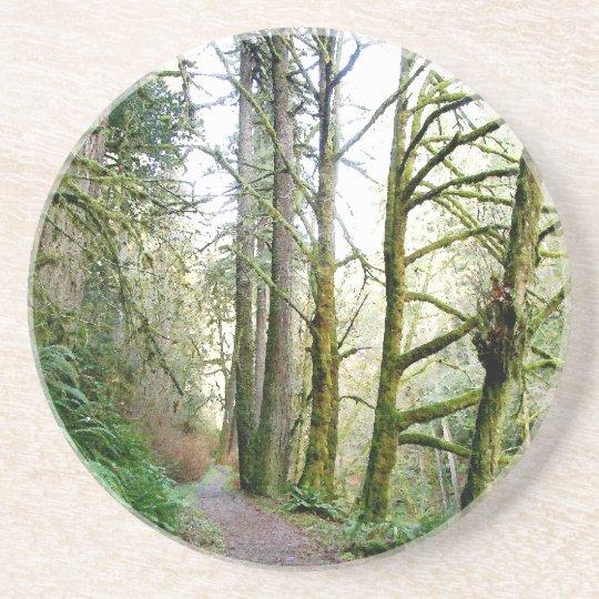 Tree Leaves Leaf Design Woods Forest Coaster