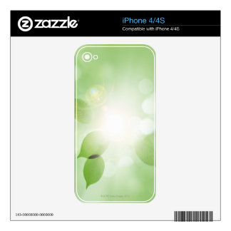 Tree Leaves Skins For The iPhone 4
