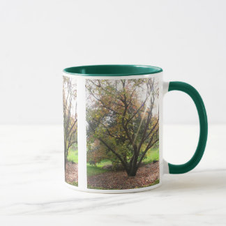 Tree Light Ray Mug